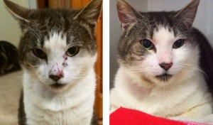 George_before_after